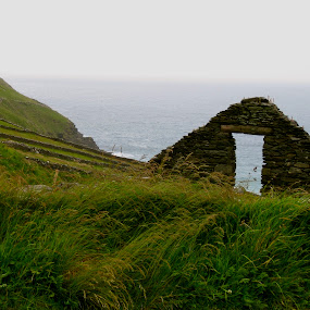 Ruins by Seamus Crowley - Landscapes Travel ( ireland, grass, fog, green, ruin, sea, ocean, rock, overcast )