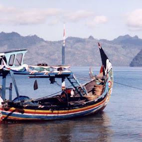 Traditional fishing boat by Wayne Duplessis - Transportation Boats ( sand, indonesia, sea, ocean, traditional, java, prigi, fishing, beach, boat )