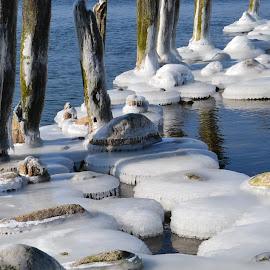 by Rita Bugiene - Nature Up Close Rock & Stone
