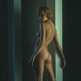 Two strips by Dmitry Laudin - Nudes & Boudoir Artistic Nude ( look, studio, nude, girl, beautiful, light )