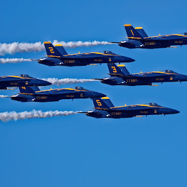Blue Angels 775 by Raphael RaCcoon - Transportation Airplanes ( blue angels )