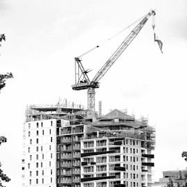 by Rachel Urlich - Buildings & Architecture Office Buildings & Hotels (  )