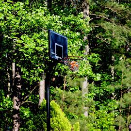 by Tatyana Jones - Sports & Fitness Basketball