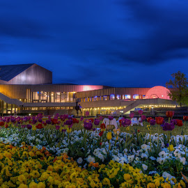 Badisches Staatstheater  by Jessica Horn - City,  Street & Park  City Parks ( karlsruhe, dawn, park, blue hour, night, germany, flowers, evening, city )