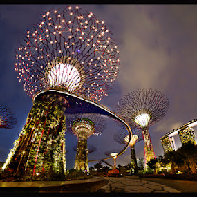 Gardens at the Bay by Glice Galac - Buildings & Architecture Office Buildings & Hotels ( mbs, gardens, panorama, singapore )
