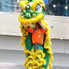 Lion Dance on Stilt  by Dennis Ng - Sports & Fitness Other Sports