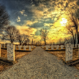 by Otto Mercik - City,  Street & Park  Cemeteries