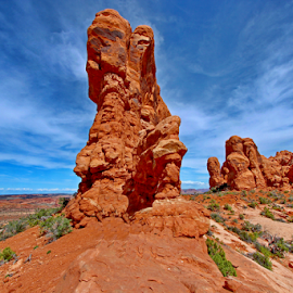 Arches National Park by Dipali S - Landscapes Caves & Formations ( moab, orange, unique, desert, park, america, national, states, sandstone, rock, scenic, preserve, red, arches national park, nature, utah, formations, outdoor, arches, southwest, service, monument, natural, geological )