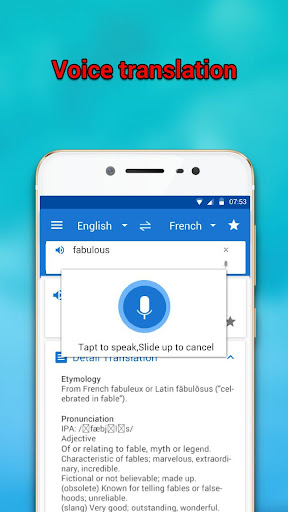 Language translator and dictionary For PC