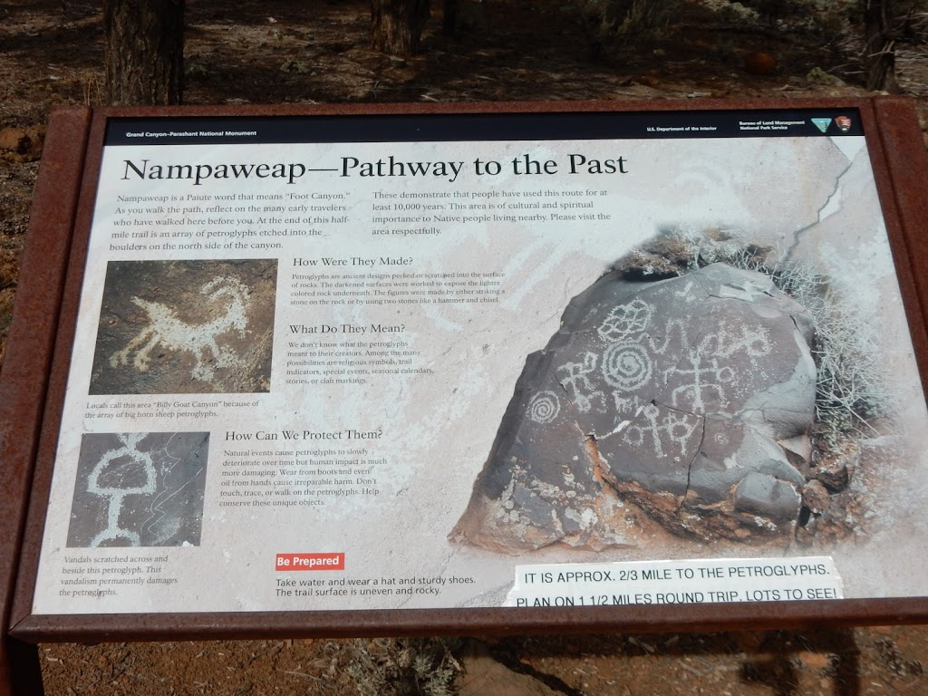 """Nampaweap Is a Pauite word that means """"Foot Canyon."""" As you walk the path, reflect on the many early travelers who have walked here before you. At the end of this half mile trail is an array of ..."""