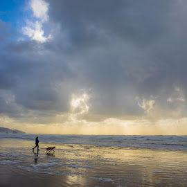 Dog-Walk by Richard Duerksen - Animals - Dogs Running ( woman, cannon beach, ecola, dog )