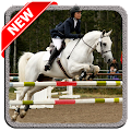 Horse Jump Show for Lollipop - Android 5.0
