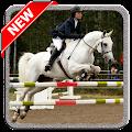 Descargar Horse Jump Show 1.2 APK
