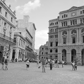 HAVANA by Gary Colwell - Buildings & Architecture Architectural Detail ( havana, cuba )