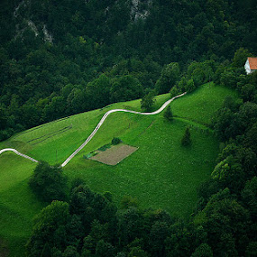 ...green green grass of home by Gregor Znidarsic - Landscapes Mountains & Hills