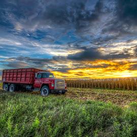 Harvest Time by Bob Crow - Landscapes Sunsets & Sunrises ( clouds, sky, sunset, landscape, corn,  )