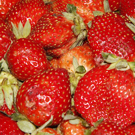 Strawberry by Muhra Zikrullah - Food & Drink Fruits & Vegetables ( canon, fruit, red berries, sweet, fruits, strawberry )