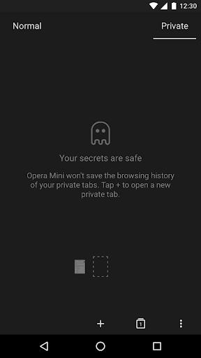 Opera Mini - fast web browser screenshot 6