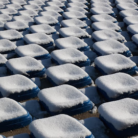 Ред by Georgi Kolev - Abstract Macro ( сняг., седалки., ден., слънчев., време. )