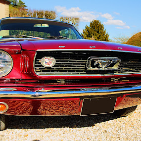 Mustang at Breteuil Casttle by Gérard CHATENET - Transportation Automobiles
