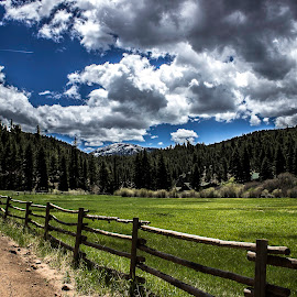 by Shawn Greenwald - Landscapes Mountains & Hills ( field, fence, mountains, sky, colorado, roadside )
