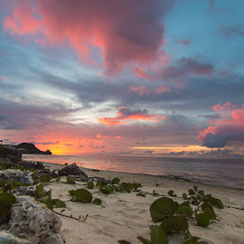 Tumon Sunset by Cory Loomis - Landscapes Sunsets & Sunrises ( sand, guam, bright, blue, colors, sunset, plants, ocean, pink, beach, breathtaking )