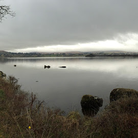 Lough Eske, Donegal by Liam Coburn Dunne - Instagram & Mobile iPhone ( water, reflection, serenity, peace, trees, grey, lough, iphone, stones, donegal, eske,  )