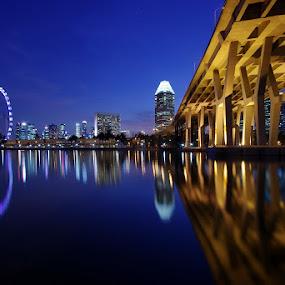 Benjamin Sheares Bridge @Blue Hour by Ken Goh - Buildings & Architecture Bridges & Suspended Structures (  )