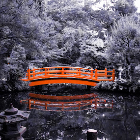 the pond by Yuliani Liputo - City,  Street & Park  City Parks ( temple, park, bridge )