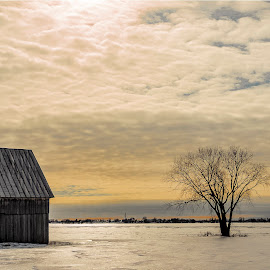 Beautiful winter's afternoon ... by Claude Desrosiers - Landscapes Prairies, Meadows & Fields ( clouds, quebec, sky, winter, canada, colors, ice, snow )