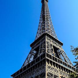 Eiffel Tower by Lori Louderback - Buildings & Architecture Public & Historical