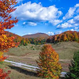 Bjelolasica by Stanislav Horacek - Landscapes Mountains & Hills