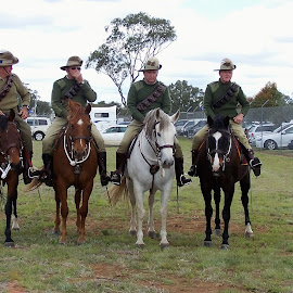 Light Horse Brigade by Sarah Harding - Novices Only Portraits & People ( army, horses, novices only, display, exhibition )