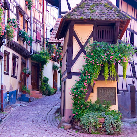 Village in Alsace. by Gale Perry - City,  Street & Park  Street Scenes ( half timbered., equisheim, village, france, alsace, flower, cobblestone )