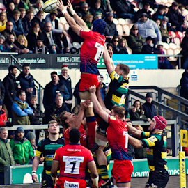 by Mike Ross - Sports & Fitness Rugby