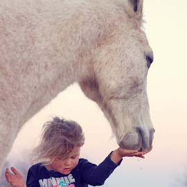 Feeding time by Chrismari Van Der Westhuizen - Babies & Children Children Candids ( animals, horses, horse, childhood, kids, farmanimals )