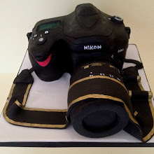 Carved Camera Cake Class