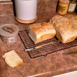 Nothing like fresh hot buttered bread straight out of the oven. by Kevin Bittner - Food & Drink Cooking & Baking