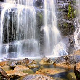 by Rogerio Ribas - Nature Up Close Natural Waterdrops