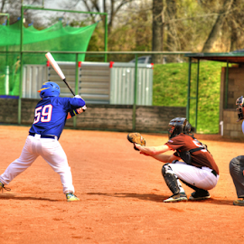 Baseball by Vladimir Gergel - Sports & Fitness Baseball