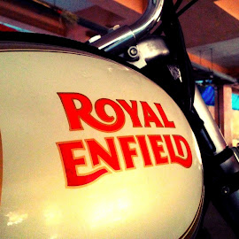Royal Enfield  by Abhinav Sengupta - Transportation Motorcycles