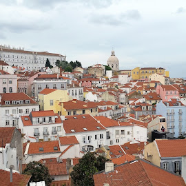 Lisboa, Portugal by Paul Gallaher - City,  Street & Park  Skylines
