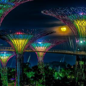 Avatar by Edward Adios - Landscapes Travel