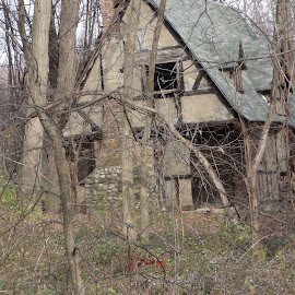 The Gingerbread House by Lenora Popa - Buildings & Architecture Decaying & Abandoned ( loneliness, gingerbread house, trees, architecture, abandoned )
