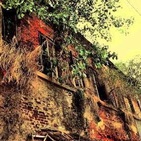Heritage House by Jhilam Deb - Buildings & Architecture Homes ( heritage house, kolkata, poro bari, ghost house, jamindar bari,  )