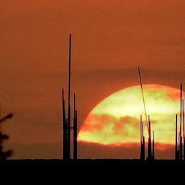 An urban sunset by Govindarajan Raghavan - Landscapes Sunsets & Sunrises