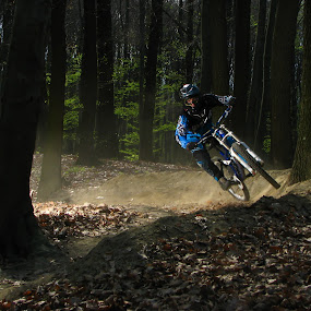 Above normal life by Mario Novak - Sports & Fitness Cycling ( dh downhill race forest, mario novak photo )
