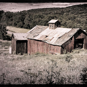 Coventry Barn by Fran Gallogly - Buildings & Architecture Other Exteriors ( pwcotherworldly-dq )