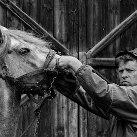 Dajka by Roseti Bruno - People Portraits of Men ( look, work, village, black and white, horse, photography, culture, rural, man, animal,  )