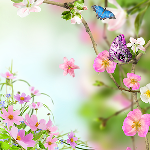 Flowers Live Wallpaper Online PC (Windows / MAC)